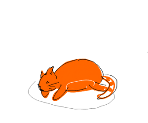 A fat orange tabby cat.
