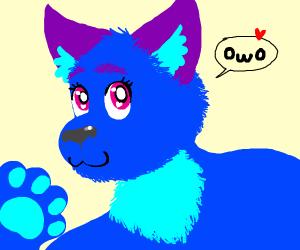 A furry. (OwO)