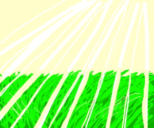Sun nurishes grass with its light