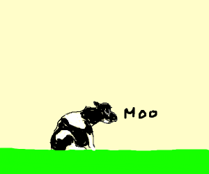A cow sitting in a field