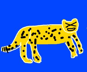 cheeta xd
