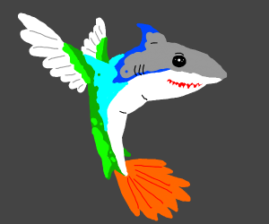 Hummingbirds are the Sharks of the Sky