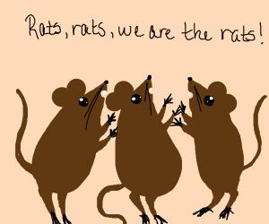 Rats, rats, we are the rats