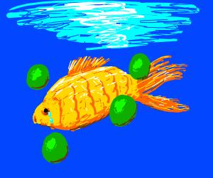 Green orbs bullying a gold fish