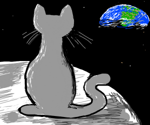 cat sitting on moon
