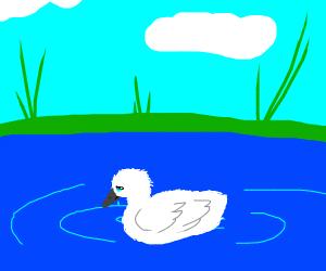 sad ugly duckling