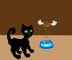 Cat's cat food grew wings and is flying away