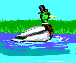 duck with hat