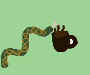 Snake smells a mug of hot cocoa