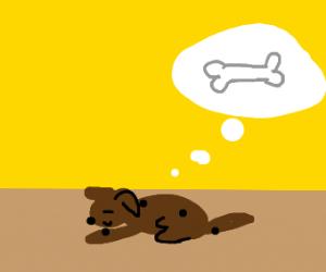 Happy dog dreams of bone
