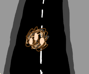 A Nest crossing the Road