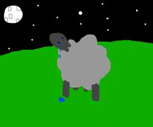 forever alone sheep