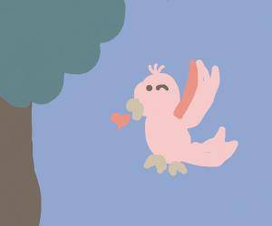 Kissy Birdie