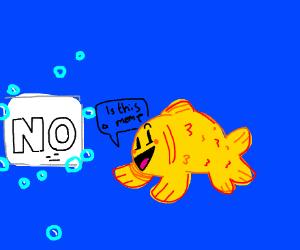 fish guessing its a meme