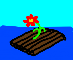 A red flower on a raft at sea