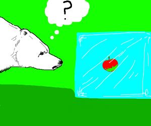 An apple on an ice cube