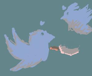 Tweet bird cooks for his GF