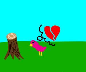 pink bird's look of despair in destroyed tree