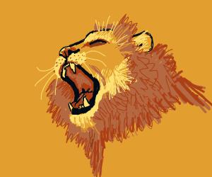 Lion going 'O'