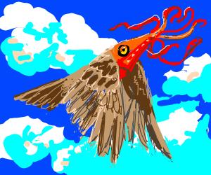 Squidbird