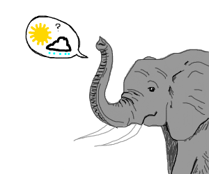 Elephant talking about the weather