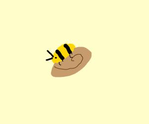 Bumblebee on a bun