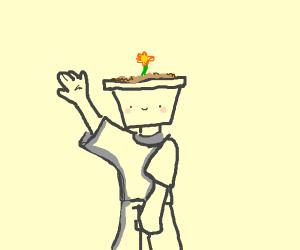Literal pot head