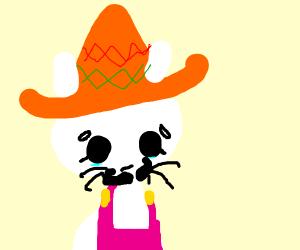Mexican Hello Kitty is sad