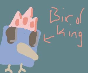 Square bird king