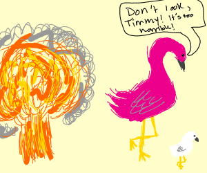 Flamingos don't look at explosions