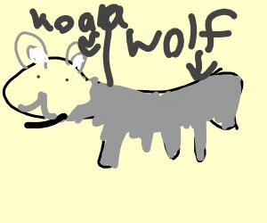wolf with koala face