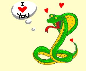 a cobra loves you