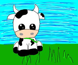 Cow like grass