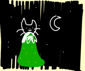 Cat on a hill at night