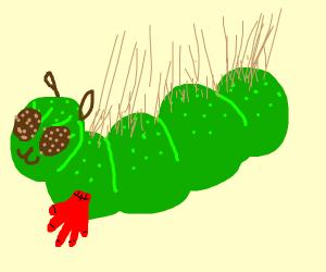 Caterpillar wearing Gloves