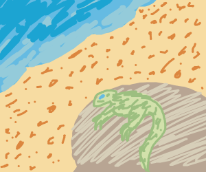 Lizard at the beach. Chillaxin.