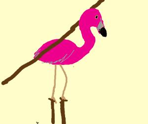 Flamingo on stilts