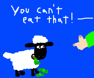 sorry sheep, you can't eat money