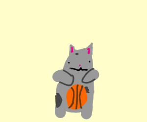 cat playing basket ball