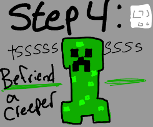 Step 3 go back inside and play minecraft