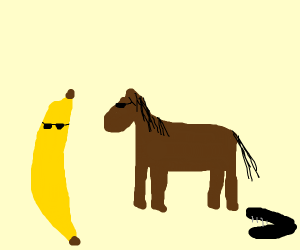 banana, horse and stapler looking cool