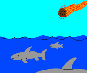 meteor is about to hit some sharks
