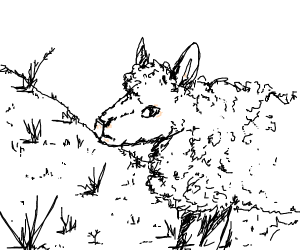sheep ;))