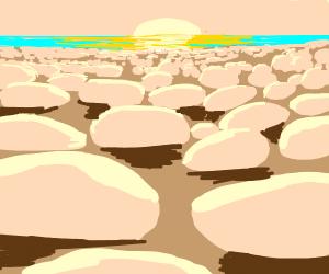 Rocks or pebbles???