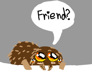 Lucas the Spider wants to be your friend