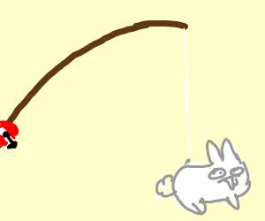 rabbit fishing