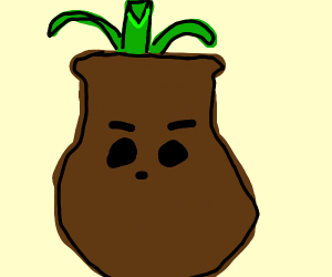 brown pot with face