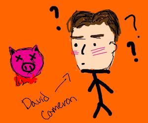 david cameron questions the death of pig head