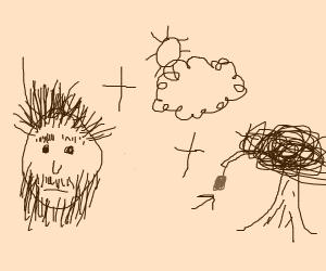 Hairy Cloudberry