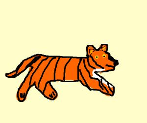 Fast tiger